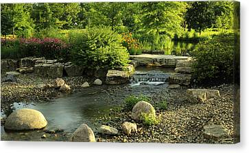 Summer In Forest Park Canvas Print by Scott Rackers