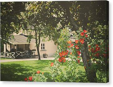 Canvas Print featuring the photograph Summer In The Park by Ari Salmela