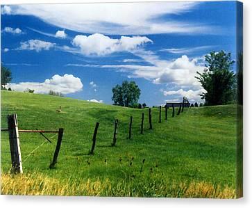 Summer Landscape Canvas Print by Steve Karol