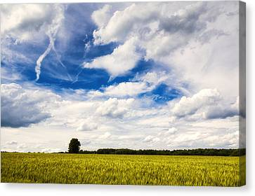 Summer Landscape With Cornfield Blue Sky And Clouds On A Warm Summer Day Canvas Print by Matthias Hauser