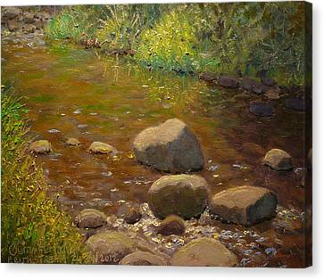 Summer Leith Stream  Canvas Print