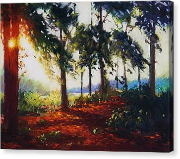 Summer Light Canvas Print