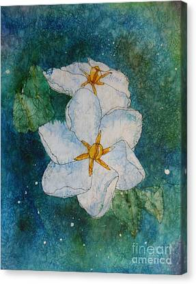 White Gardenia Canvas Print - Summer Light by Kitty Mecham