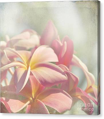 Summer Love Canvas Print by Sharon Mau