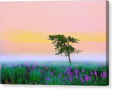 Canvas Print featuring the photograph Summer Mood by Kadek Susanto