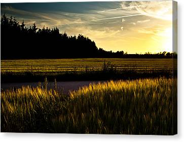 Road Canvas Print - Summer Night I July by Michael  Bjerg