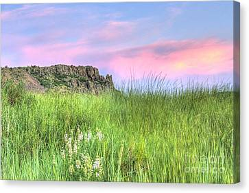 Summer Night In The Foothills Canvas Print by Juli Scalzi