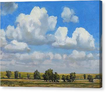 Summer Pasture Canvas Print by Bruce Morrison