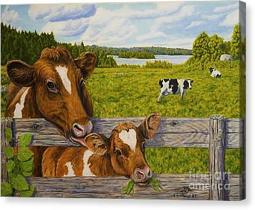 Summer Pasture Canvas Print by Veikko Suikkanen
