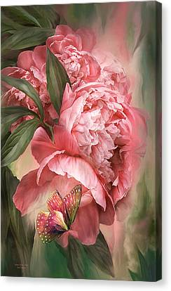 Summer Peony - Melon Canvas Print by Carol Cavalaris