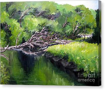 Summer Reflection Canvas Print by Ronald Tseng