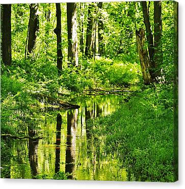 Summer Reflections Canvas Print by Al Fritz
