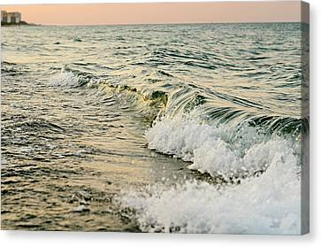 Summer Sea Canvas Print by Laura Fasulo