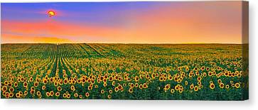 Summer Slumber Canvas Print