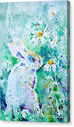 Summer Smells Canvas Print by Zaira Dzhaubaeva