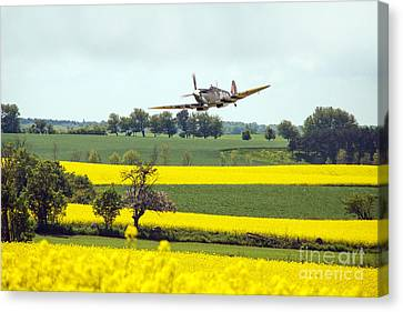 Summer Spitfire  Canvas Print