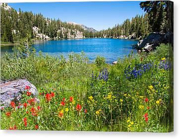 Summer Splendor At T J Lake Canvas Print by Lynn Bauer