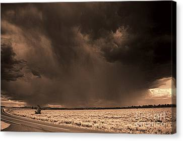Summer Storm Canvas Print by Brenton Cooper