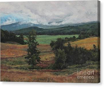 Summer Storm Canvas Print by Gregory Arnett