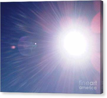 Summer Sun Canvas Print by Fiona Glass W
