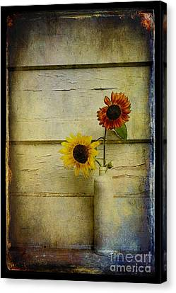 Summer Sunflowers Canvas Print by Sari Sauls