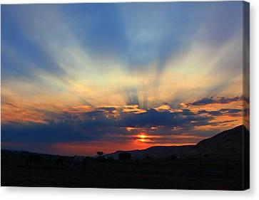 Canvas Print featuring the photograph Summer Sunrise by Lynn Hopwood