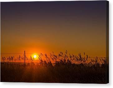 Summer Sunrise On The Plains Canvas Print