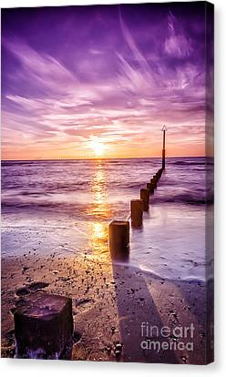 Summer Sunset Canvas Print by Darren Wilkes