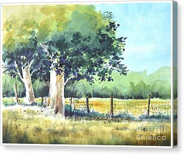 Summer Trees Canvas Print by Rick Mock