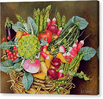 Summer Vegetables Canvas Print by EB Watts