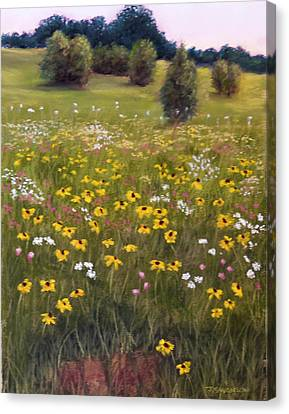 Summer Wildflowers Canvas Print by Joan Swanson