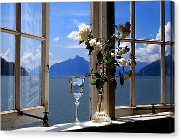 Summer Window-2 Canvas Print by Michael Dohnalek