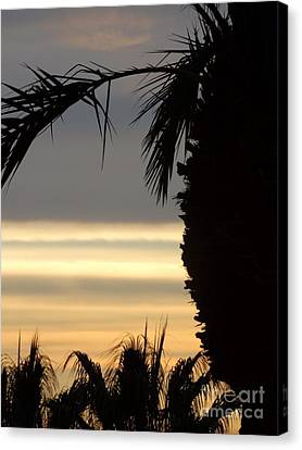 Summerlin Nv Sunset Canvas Print