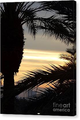 Summerlin Sunset Canvas Print