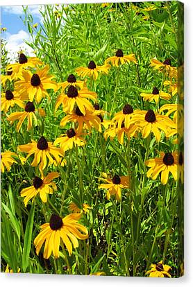 Summer's Love Canvas Print by Andrea Dale