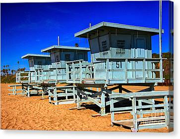 Summers Sentinels 2 Canvas Print by David Doucot