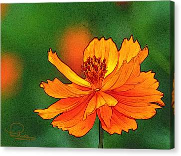 Canvas Print featuring the photograph Summertime 6 by Ludwig Keck