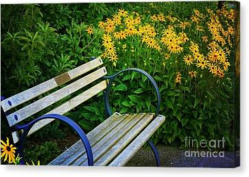 Summertime Bench Canvas Print by Maria Janicki