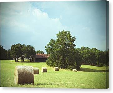 Summertime  Hay Bales  Canvas Print by Ann Powell