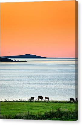 Summertime In Iceland With The Midnight Canvas Print