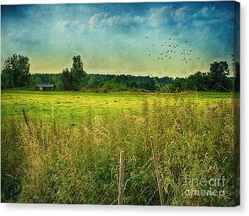 Summertime Canvas Print by Jutta Maria Pusl