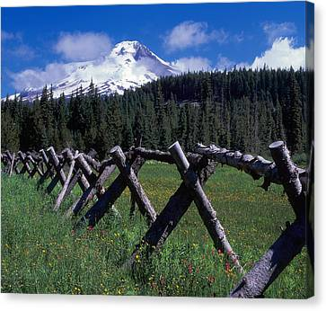 Summit Meadow Canvas Print