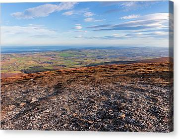 Summit Of Djouce Mountain In Wicklow Canvas Print