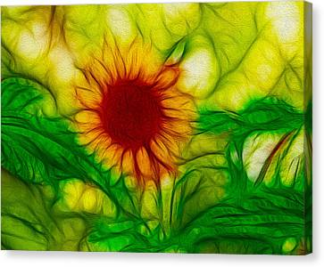 Sun And A Flower Canvas Print by Omaste Witkowski
