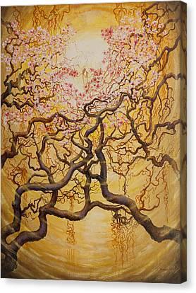 Sun And Sakura Canvas Print by Vrindavan Das