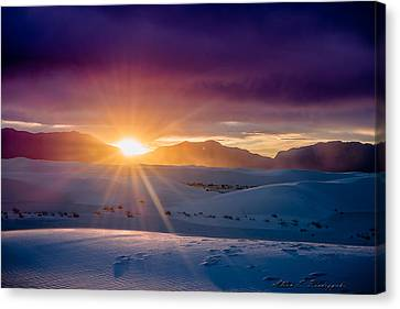 Sun And White Sand Canvas Print by Allen Biedrzycki
