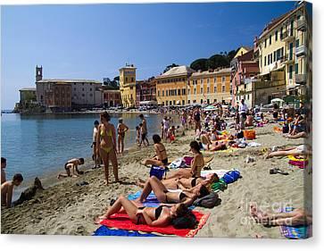 Sun Bathers In Sestri Levante In The Italian Riviera In Liguria Italy Canvas Print by David Smith