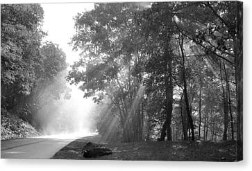 Sun Beams Canvas Print by Todd Hostetter
