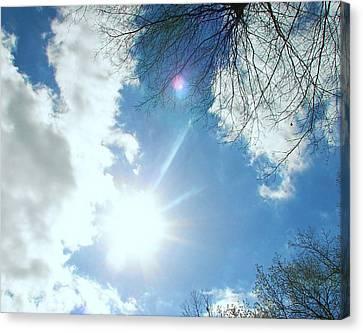 Canvas Print featuring the photograph Sun Burst by Pamela Hyde Wilson