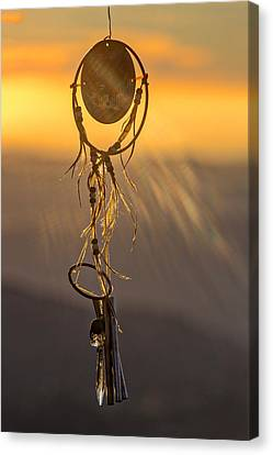 Sun Catcher Canvas Print by Peter Tellone
